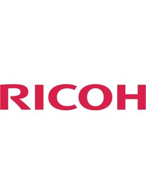 Ricoh 3D Glasses Type 2 - For Projector